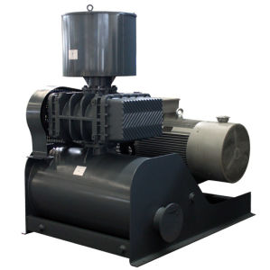 Estrutura compacta do soprador de deslocamento positivo/resfriamento a ar