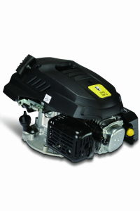 De Motor van de benzine (1P56F)