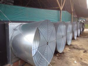 De Ventilator van de Kegel van de vlinder voor het Landbouwbedrijf van het Gevogelte
