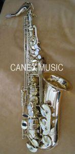 Saxofone Alto Alto / Saxofone / Instrumentos Musicais (SAA1000-L)