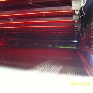 Transportador de tratamiento térmico de pelo de la máquina con 85cm de ancho cinturón