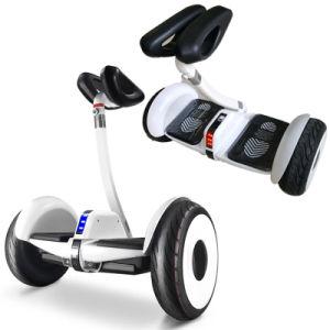 電気スクーターのバランスをとっているNinebot 2の車輪の自己