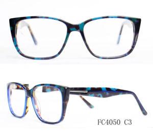 Het modieuze Optische Frame van de Stijl van Vier Kleuren Europese
