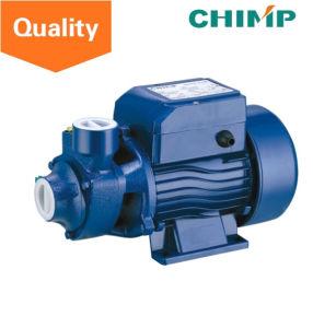 Chimp QB60 0.5 HP pequeño eléctrico de la bomba de aspersión de agua de riego