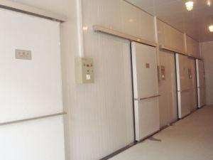 Chambre froide pour panneau Blast congélateur/Cold Storage