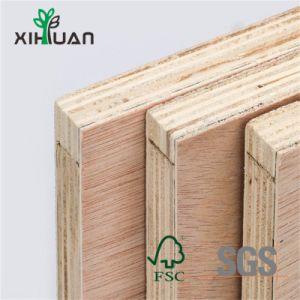 Placas de madeira laminada Birch contraplacado 18mm Color