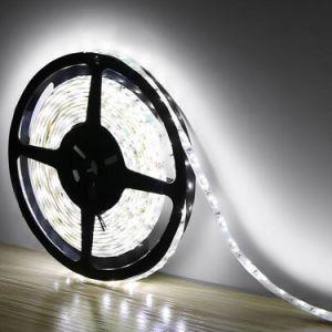 120 M/LED SMD 3528 tira de LED blanco cálido impermeables de la luz