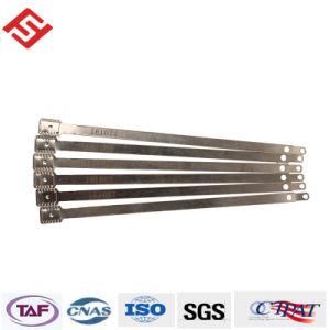 As vedações de metal Sf-Ml102 para contentores com códigos de barras