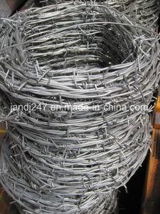 Il filo protettivo con l'alta qualità ed il prezzo poco costoso