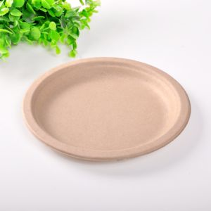 Eco Friendly jetables biodégradables Container-Plate Fast Food de pâte de paille