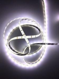 Indicatore luminoso di striscia di SMD 2835 LED impermeabile