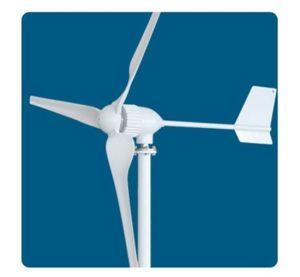 1000W 중국 Brand Wind Turbine Wind Generator Wind Power