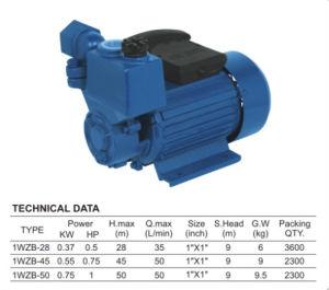セリウムApproved Cast Iron Water Pump (1WZB)