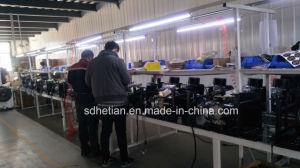 Forte generatore di CC del veicolo elettrico di potere di Zongshen