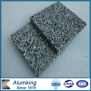 Espuma de aluminio para la casa móvil