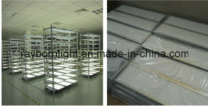Quadrat verschob 1200X600mm 60W LED Deckenverkleidung-Licht