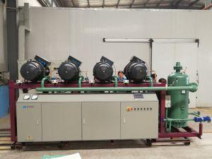 Unità parallela del compressore della vite usata alimento per memoria a temperatura elevata