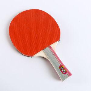 Professional Fabricant offre des raquettes de tennis de table de ping-pong défini avec le meilleur prix