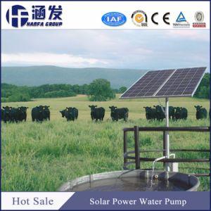 Système de pompe à eau solaire et le convertisseur pour l'Agriculture (SH Série)