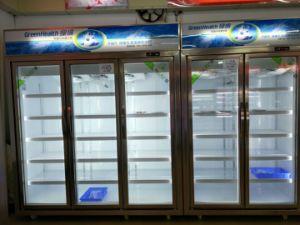 Congelatore di vetro del portello della visualizzazione di gelo del doppio verticale libero della vetrina