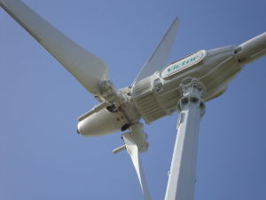 10kw Wind Turbine Generator for Wind Solar Hybrid System