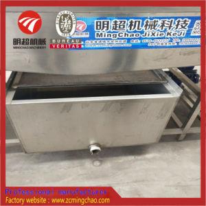 Walzen-Trommel mit Pinsel-Waschmaschine für Verpackungs-Beutel/Frucht/Gemüse