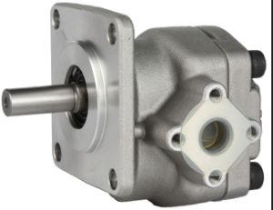 Fornitore-Alta pompa a ingranaggi di pressione della Cina (GPY-9)