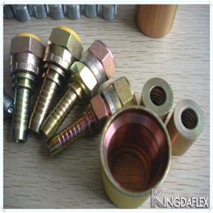 Montaggi idraulici d'ottone ad alta pressione del puntale del tubo flessibile