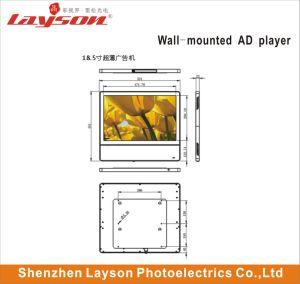 43-дюймовый ЖК-рекламы Media Player Video Player TFT экран элеватора сети WiFi ультратонких полноцветный светодиодный HD Digital Signage