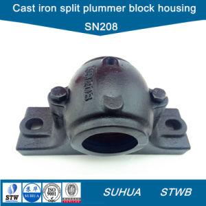 División de hierro fundido Two-Bolt Plummer bloquea la caja (SN208)