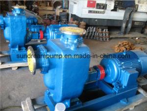 С самозаливкой дизельного двигателя водяной насос/ орошения насос (ZW)