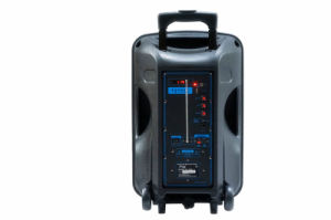 Neuer Kugel-Licht PA-Systems-Laufkatze-Lautsprecher Al1232c Amaz