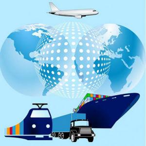 Puerta a Puerta de carga aérea DHL a EE.UU.