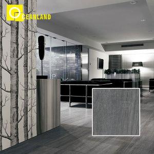Теплоизоляция настенные украшения керамические плитки 60*60