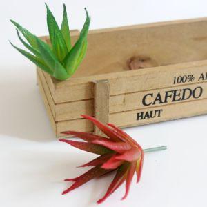 Африканские алоэ стиле Succulents Mini Искусственные растения