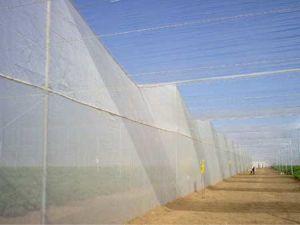 HDPE het UVNetwerk van het Insect van het AntiInsect van de Serre Netto, Anti, Netto anti-Bladluis