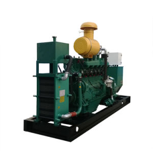 Hölzerner Lieferungs-Pflanzenlebendmasse-Generator für Verkauf
