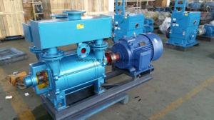Bague de l'eau pompe à vide utilisée pour épuiser les gaz corrosifs