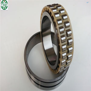 SKF NSK 30*55*19mm de doble fila rodamiento de rodillos cilíndricos nn3006-K-M-SP
