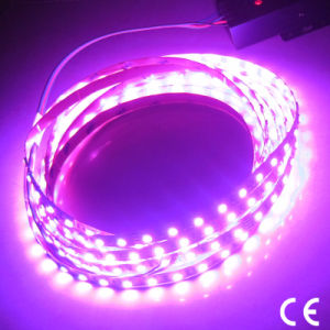 RGB LED luces tiras impermeable con IP65