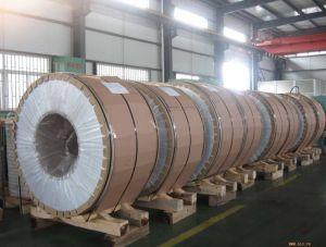 Bobina dell'acciaio inossidabile/strato laminati a freddo (Sm034)