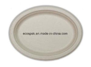 Jetables biodégradable blanc 10 x 8 plaque ovale de taille moyenne