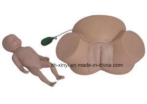 Simulador de parto, XY-5simulador de entrenamiento de habilidades de un parto