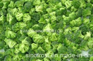 IQF Broccoli, Bevroren Broccoli, de Bloemen van Broccoli IQF, de Broccoli van de Besnoeiing IQF, Spears van Broccoli Bqf, de Bevroren Broccoli van de Besnoeiing, de Bevroren Bloemen van Broccoli, de Bevroren Stelen van Broccoli