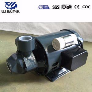 Водяной насос электрическая мощность в стиле 0.5HP Lowara