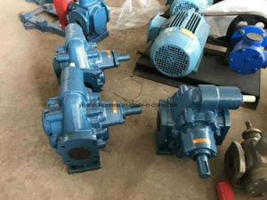 Diesel elettrico ad ingranaggi della pompa della benzina