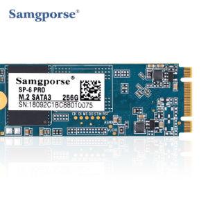 Disco rígido portátil SSD de 256 GB M. 2 Ngff 2280 Disco Rígido SSD para venda