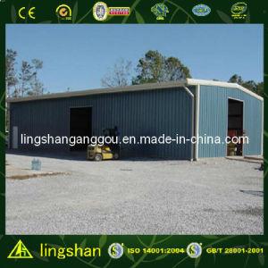 Гараж автомобиля стальной структуры (LS-S-100)