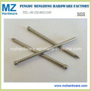 Verloor de Concave Steel van het roestvrij staal de Hoofd het Eindigen Spijker van de Spijker zonder kop