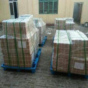 Китай производитель изготовленный на заказ<br/> цвета наружный скелет масляного уплотнения
